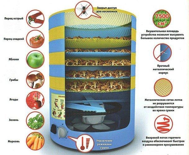 Как сделать сушилка для овощей и фруктов